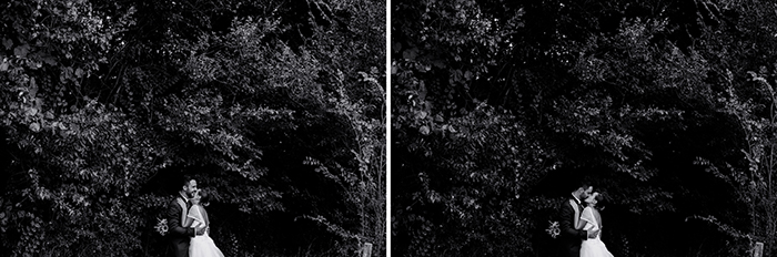 contrasti-vd-476-horz