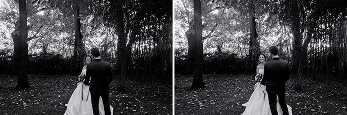 contrasti-561-horz